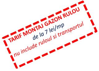tarif-montaj-gazon-rulou